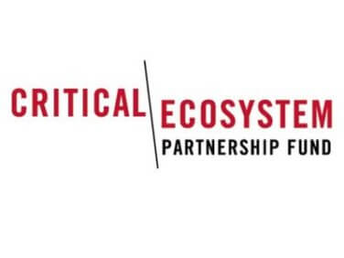 Critical Ecosystem Partnership Fund (CEPF) : call for letters of inquiry Mediterranean Basin Biodiversity Hotspot Small Grants