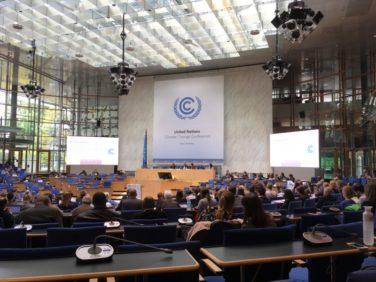 Convention Climat à Bonn : AVN poursuit son plaidoyer