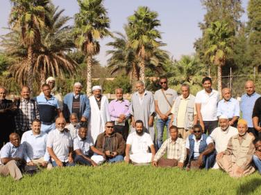 Newsletter n°1 sur le développement durable des oasis dans le sud algérien