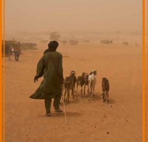 Améliorer la résilience au changement climatique, et à la sécurité alimentaire et nutritionnelle – ACF
