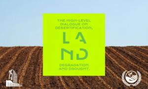 la-lutte-contre-la-desertification-a-lagnu