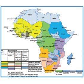 Accords de partenariat économique et agriculture : quels enjeux pour l'Afrique?