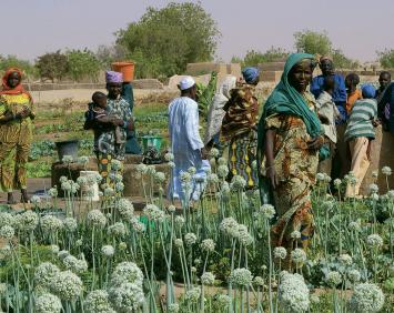 Ouvrage collectif sur l'agroécologie