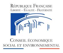 Avis du CESE « Face au défi du développement : comment renforcer les ONG Françaises »
