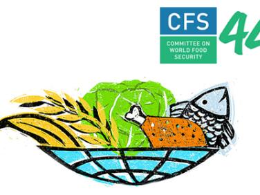 Coordination SUD au Comité de la sécurité alimentaire mondiale et au Forum du MSC 2017