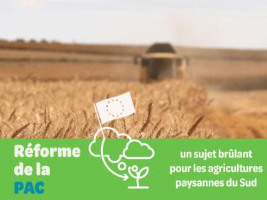 Réforme de la PAC:  un sujet brûlant pour les agricultures paysannes du Sud