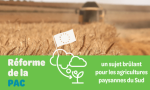 reforme-de-la-pac-un-sujet-brulant-pour-les-agricultures-paysannes-du-sud