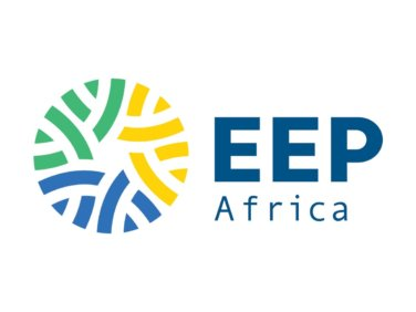 The Energy and Environment Partnership (EEP) Africa 15th call for proposals : Promoting Gender Inclusion Across the Clean Energy Sector in Southern and East Africa