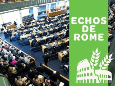 Echos de Rome – 46e session du CSA