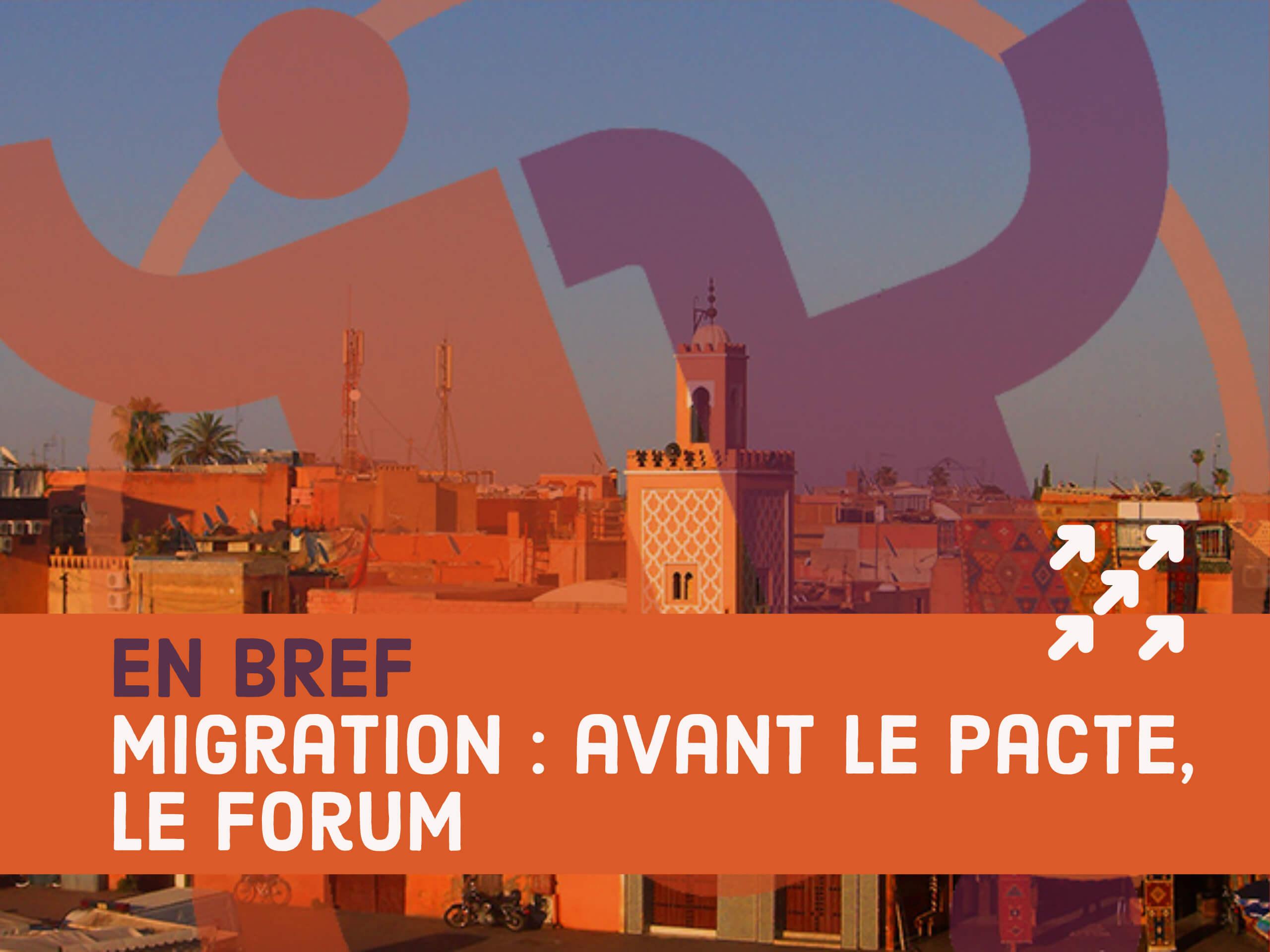 Forum sur la migration et le développement