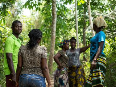 Rencontre multi-acteurs climat et forêts: bilan et perspectives pour les pays forestiers tropicaux