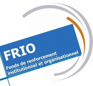 """Capitalisation: """" Le développement d'activités lucratives au sein de son ONG"""" – 2014"""