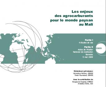 Les enjeux des agrocarburants pour le monde paysan au Mali – Geres