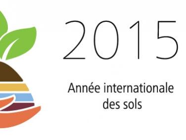 Les Nations Unies décrètent 2015 Année internationale des sols (AIS)