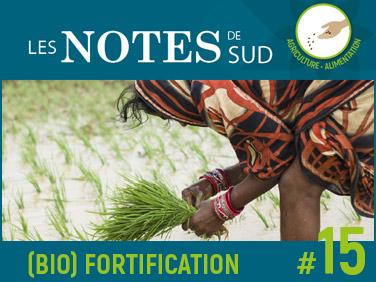 Notes de SUD #15 : Fortification, biofortification et lutte contre la malnutrition : état des lieux et débats