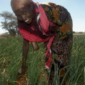 Lutte contre la faim et renforcement des droits des femmes paysannes