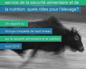 Rapport du HLPE – Quels rôles pour l'élevage?