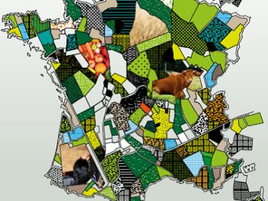 Alimentation, agriculture et climat: état des lieux des politiques publiques et leviers d'action – RAC