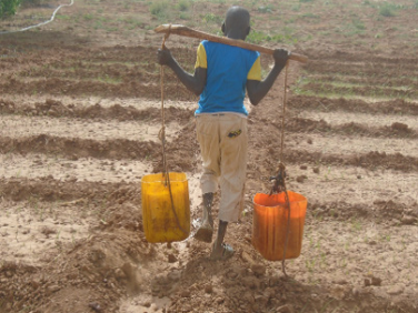 Guide sur le travail des enfants dans l'agriculture – RECA Niger