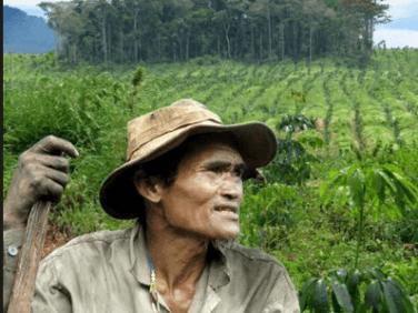 Projection-débat Accaparement et déforestation des terres des communautés Bunong