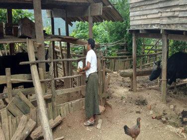 Microfinance: Thitsar Ooyin étend ses activités au Myanmar