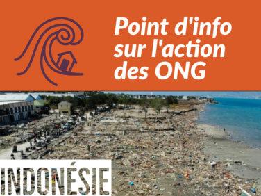 Indonésie: après le désastre, plusieurs ONG s'engagent et appellent aux dons