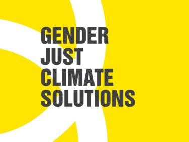 The Women and gender constituency: 5ème édition du prix «Solutions Genre et Climat»