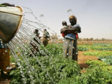 Dotations aux microprojets session thématique agriculture familiale 2014