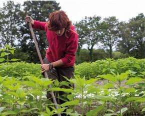 Apéro thématique: [Alternatives agricoles] La solution pour mieux vivre demain ?