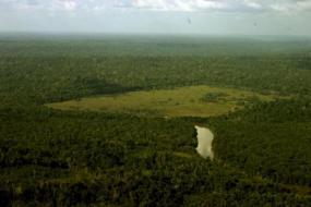 brazil_deforestation_2