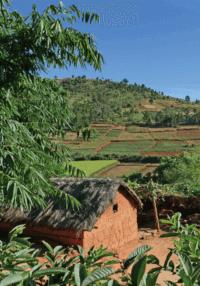 pratiques-agroecologiques-et-stocks-de-carbone-des-sols