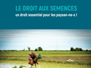 """Document de décryptage """"Le droit aux semences : un droit essentiel des paysan-ne-s !"""""""