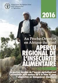 Gestion durable de l'eau en agriculture et adaptation au changement climatique – FAO