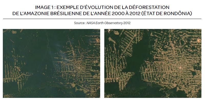 Carte Amazonie et déforestation