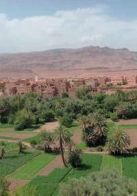 nouvelles-orientations-strategiques-de-la-france-contre-la-desertification