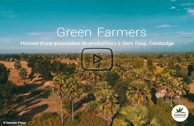 Film sur les green farmers de siem reap au Cambodge