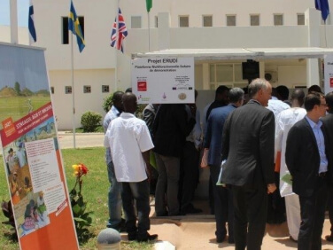 Accès à l'électricité dans les villages mauritaniens : l'atout des plateformes solaires – Gret