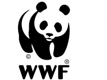 Overshoot day : nous vivons à crédit sur notre planète – WWF