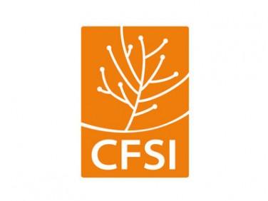 CFSI (Comité Français pour la Solidarité Internationale)