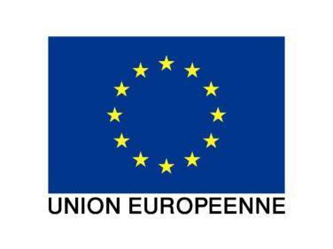 Fonds fiduciaire d'urgence de l'Union européenne – appel à Manifestation d'Intérêt «Programme d'urgence pour la stabilisation des espaces frontaliers du G5 Sahel»