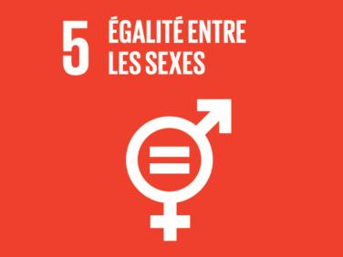 Égalité entre les sexes: comment est mis en œuvre l'ODD 5 à travers le monde? – Conférence-débat
