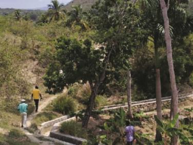 Développement agricole, protection sociale et gouvernance locale