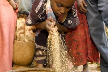 Du champ à l'assiette: comment le secteur agricole peut-il contribuer à la lutte contre la sous-nutrition?