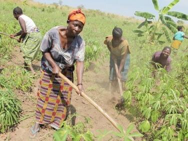 Les Notes de la C2A n°24 : Quelles politiques foncières promouvoir pour sécuriser les agricultures familiales en Afrique ?