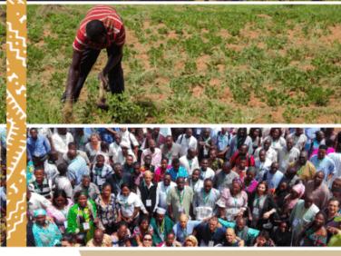 COP14 – Mettre les terres au centre ds préoccupations