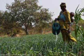 Note sur la promotion de l'agroécologie