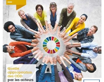 Rapport sur l'appropriation des ODD par les acteurs français – Comité21