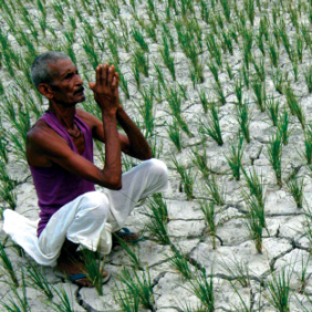 Suivi des promesses de la France en matière de financements pour le changement climatique – Oxfam