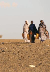 resilience-ecologique-des-outils-pour-la-mobilisation-des-jeunes