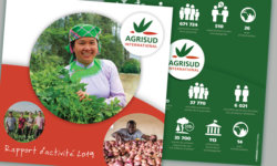 Rapport annuel 2019 Agrisud International
